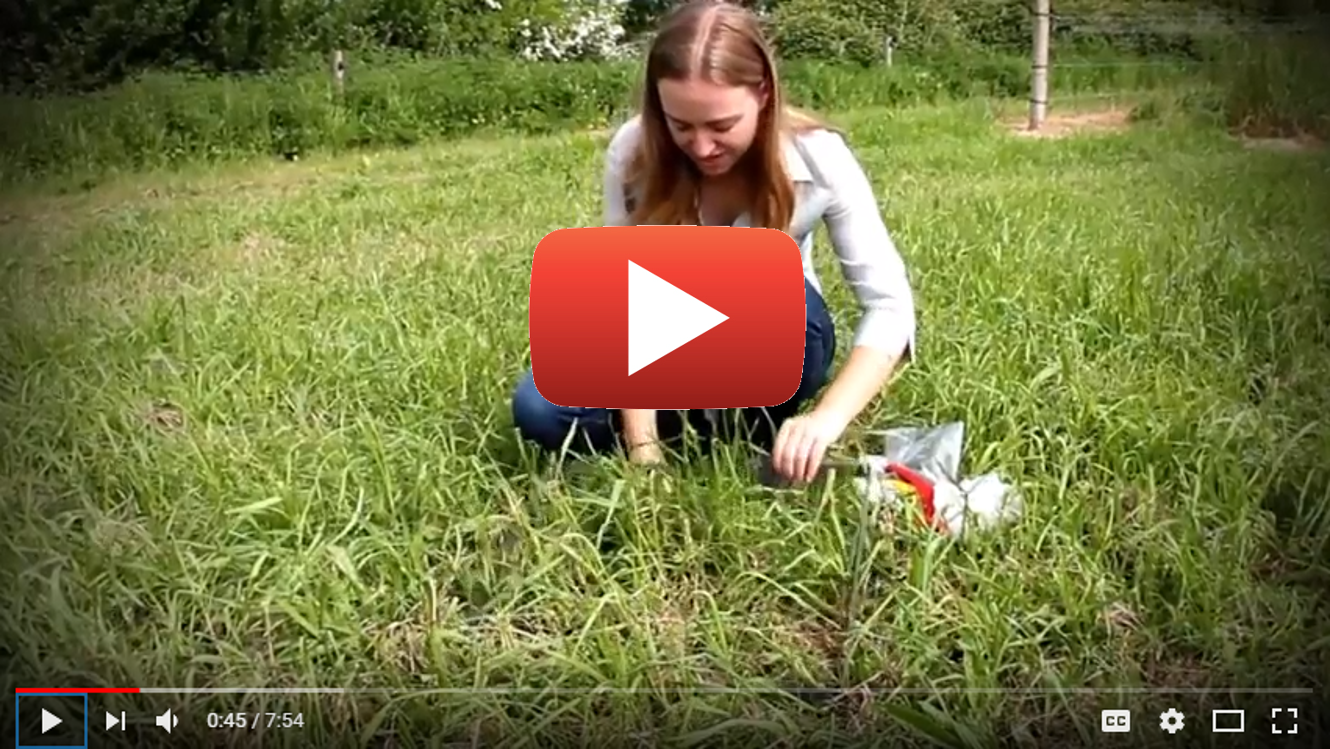 How to Measure Forage Diversity & Growth
